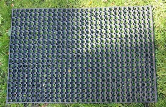 Mata Przerostowa na Plac Zabaw leżąca na trawie